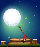 Scene with woods at night. Illustration vector illustration