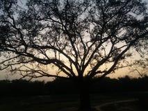 Sceneey de village dans le coucher du soleil Photographie stock