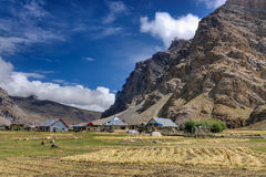 Sceneicmening van Drass-dorp, Kargil, Ladakh, Jammu en Kashmir, India Stock Fotografie