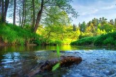 Sceneria brzeg rzeki pi?kny wizerunku natury rzeki lato t?o zieleni krajobrazu natury nowo?ytny wektor Piękny widok na brzeg rzek zdjęcie stock