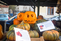Sceneria dla świętować Halloween w Krakow Zdjęcia Stock