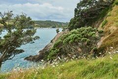 Sceneria i krajobrazy przez ziemię i wodę w Waiheke wyspie N Obraz Stock