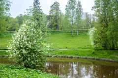 Sceneria jest ładna Krajobraz jest idylliczny Obrazy Stock