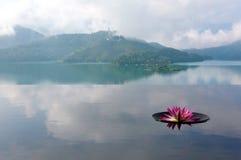 Sceneria lotosowy kwitnienie na nieskończoność basenie mgłowych górach w tle i obraz stock