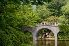 Sceneria most i drzewa w parku Bulguksa świątynia, Gyeongju, korea południowa obraz stock