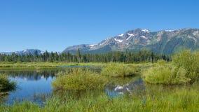 Sceneria na Południowym Jeziornym Tahoe w Kalifornia Obrazy Stock