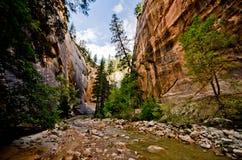 Sceneria od przesmyków wycieczkuje przy Zion parkiem narodowym. Obrazy Royalty Free