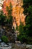 Sceneria od przesmyków wycieczkuje przy Zion parkiem narodowym. Fotografia Royalty Free