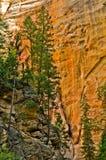 Sceneria od przesmyków wycieczkuje przy Zion parkiem narodowym. Zdjęcie Stock