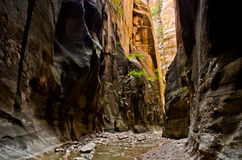 Sceneria od przesmyków wycieczkuje przy Zion parkiem narodowym. Fotografia Stock