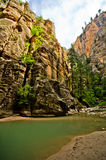 Sceneria od przesmyków wycieczkuje przy Zion parkiem narodowym. Obraz Royalty Free