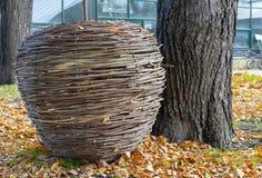 Sceneria w postaci wielkiego jabłka od suchych gałąź w jesieni miasta parku fotografia royalty free