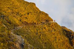 Sceneria widok Poon wzgórze, Nepal zdjęcia royalty free