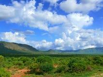 Sceneria. Wycieczka Afryka, Tanzania. Fotografia Stock
