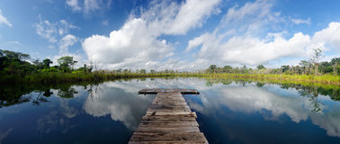 Sceneric panoramic view of the lake with a wooden pier royalty free stock image