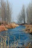 scenerii zima Zdjęcie Royalty Free