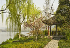 Scenery. Wonderful spring scenery beside the lake Royalty Free Stock Images