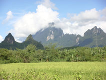 Scenery. Tropical regions of Southeast Asia pastoral scenery Stock Photography