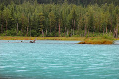 Scenery in Alaska Stock Photography