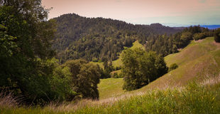 Scenery along Fort Bragg Willits Road in California Stock Images