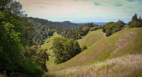 Scenery along Fort Bragg Willits Road in California Royalty Free Stock Photography