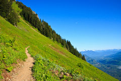 Scenery Along Sauk Mountain Trail Royalty Free Stock Photography