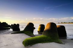 Scenery along the seashore with groyne structure. royalty free stock photos