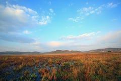 Scenery on autumn Stock Photo