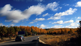 The scenery in autumn in Inner Mongolia Stock Photos