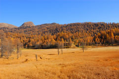 Scenery autumnal mountain landscape Royalty Free Stock Photography