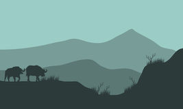 Scenery bison silhouette in hills Royalty Free Stock Photos