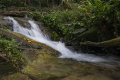 Scenery of cascaded river flowing through tropical rain forest Royalty Free Stock Photos