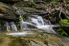 Scenery of cascaded river flowing through tropical rain forest Royalty Free Stock Images