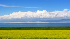 Scenery categories: Qinghai lake scenery. Eastphoto, tukuchina,  Scenery categories: Qinghai lake scenery Royalty Free Stock Photo