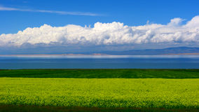 Scenery categories: Qinghai lake scenery. Eastphoto, tukuchina,  Scenery categories: Qinghai lake scenery Stock Photography