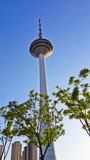 Scenery categories: Shenyang TV tower Royalty Free Stock Photos