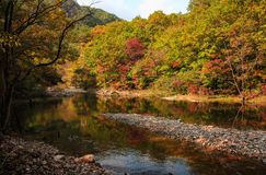 Scenery category: Liaoning Autumn Royalty Free Stock Photo
