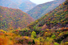 Scenery class: Ssangyong Gorge Autumn Stock Image