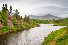 Scenery of Connemara mountains Stock Photos