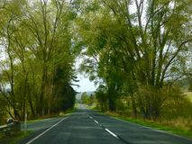 Scenery driving road trip  holiday through New Zealand Stock Photo