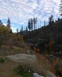 El Dorado National Forest royalty free stock photography