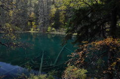 The scenery of fairy pool in Sichuan China. Royalty Free Stock Image