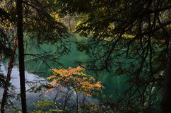 The scenery of fairy pool in Sichuan China. Royalty Free Stock Photography