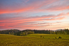 Scenery on the farm during early morning Royalty Free Stock Photos
