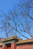 Scenery of Forbidden City Royalty Free Stock Photos