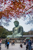 Scenery of the Great Amida Buddha at the Kotoku-in temple in late autumn Royalty Free Stock Photography