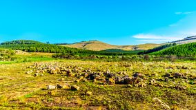 Scenery of the highveld along the Panorama Route in Mpumalanga Province, South Africa Stock Images