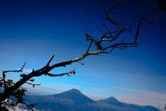 Scenery from Indonesia mountain Royalty Free Stock Image