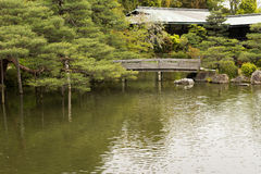 The scenery of Japanese garden with the pone. Stock Image
