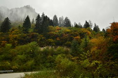 The scenery of Jiuzhaigou at Sichuan,China. Stock Images